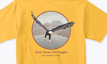 Slow Down For Eagles T-Shirt